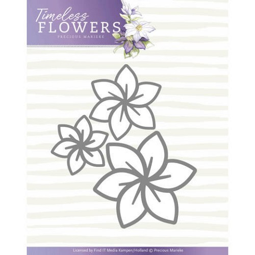 Precious Marieke Stans - Timeless Flowers - clematis trio