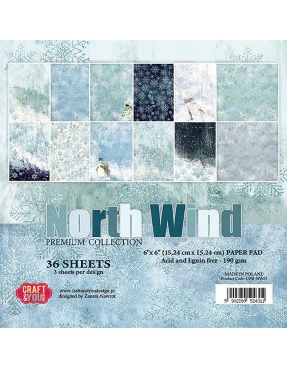 Paper Pad Craft & You - North Wind (6 x 6 inch)