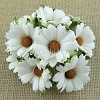Mulberry Paper Flowers - Chrysanthemums - off-white