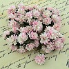 Mulberry Paper Flowers - Aster Daisy - 2-tone baby pink/ivory