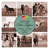 Dixi Craft Toppers - Horses Sepia